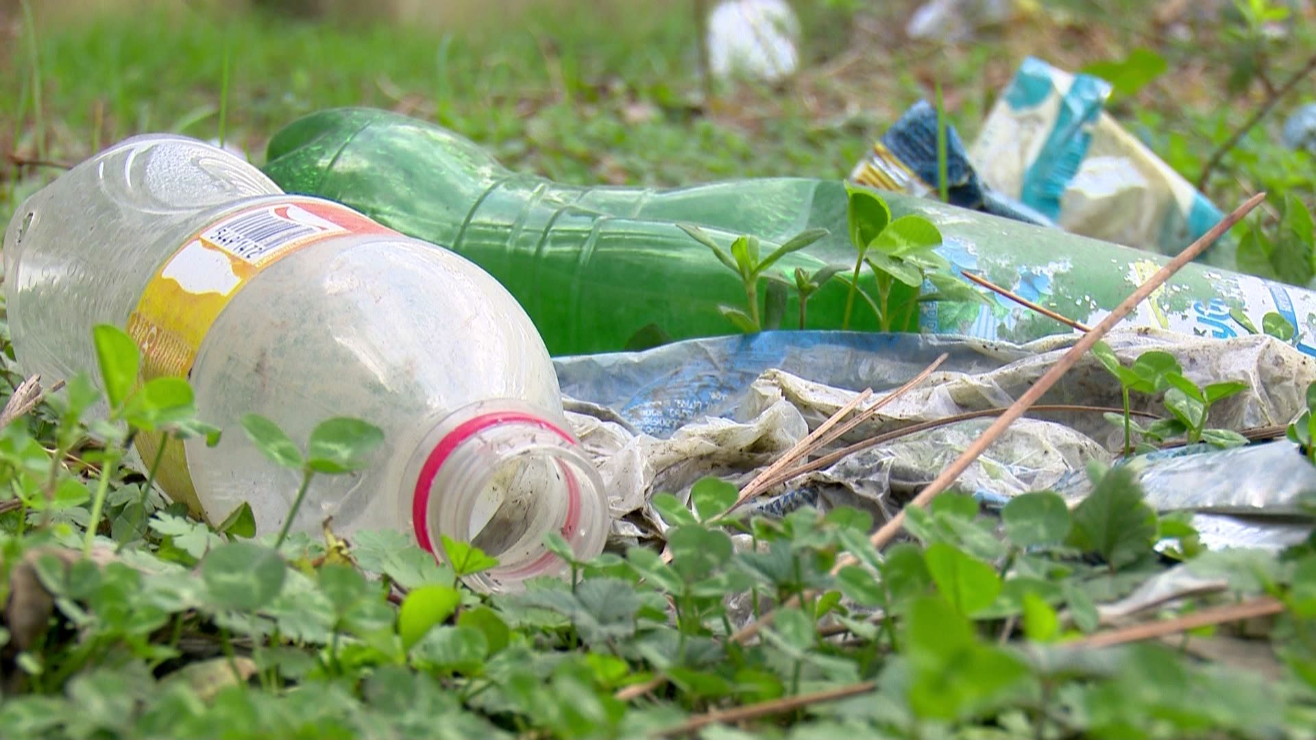 Littered territory in Kobuleti, near the free tourist zone