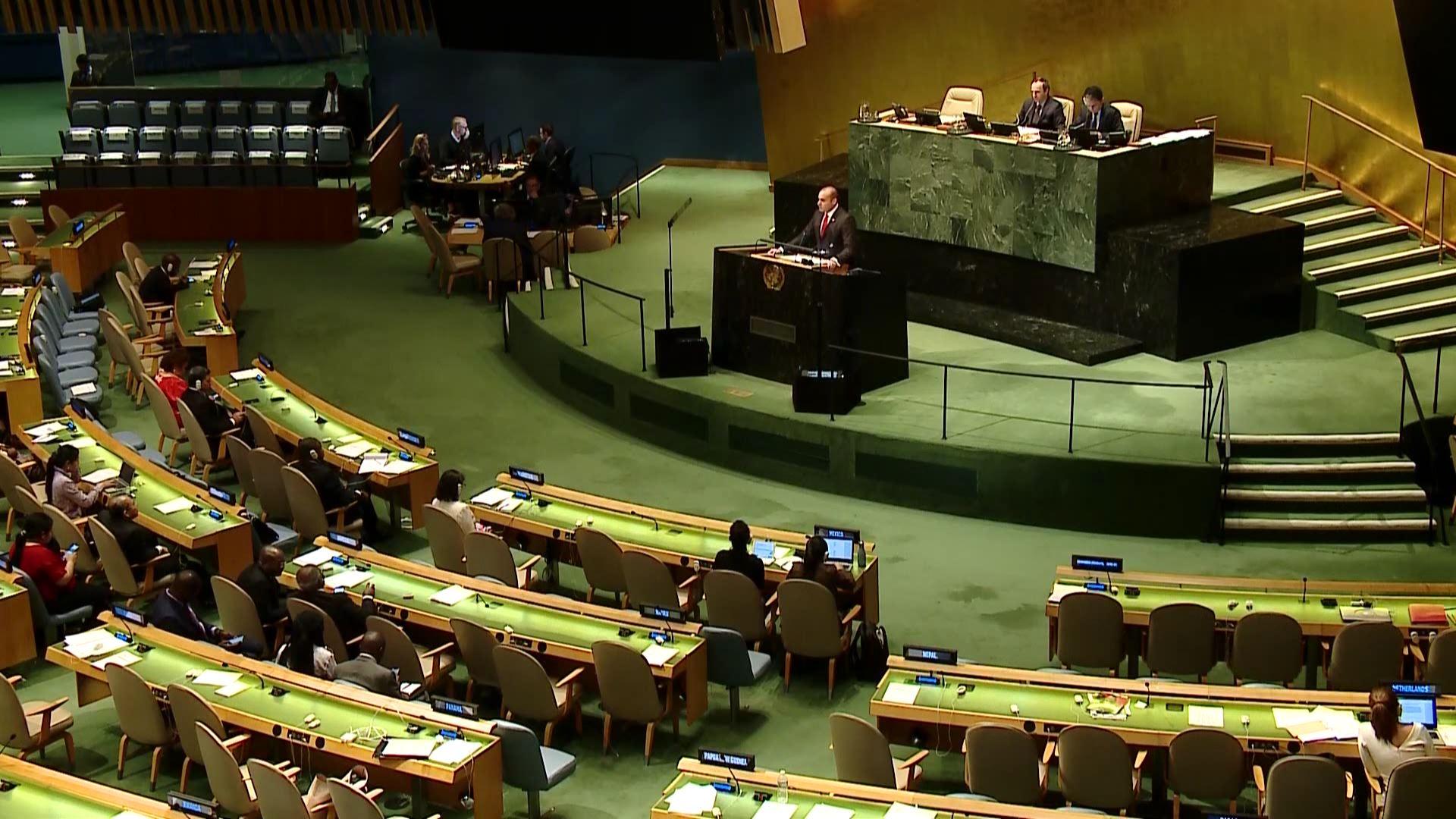 საქართველოს პრემიერ-მინისტრის გამოსვლა გენერალური ასამბლეის სესიაზე