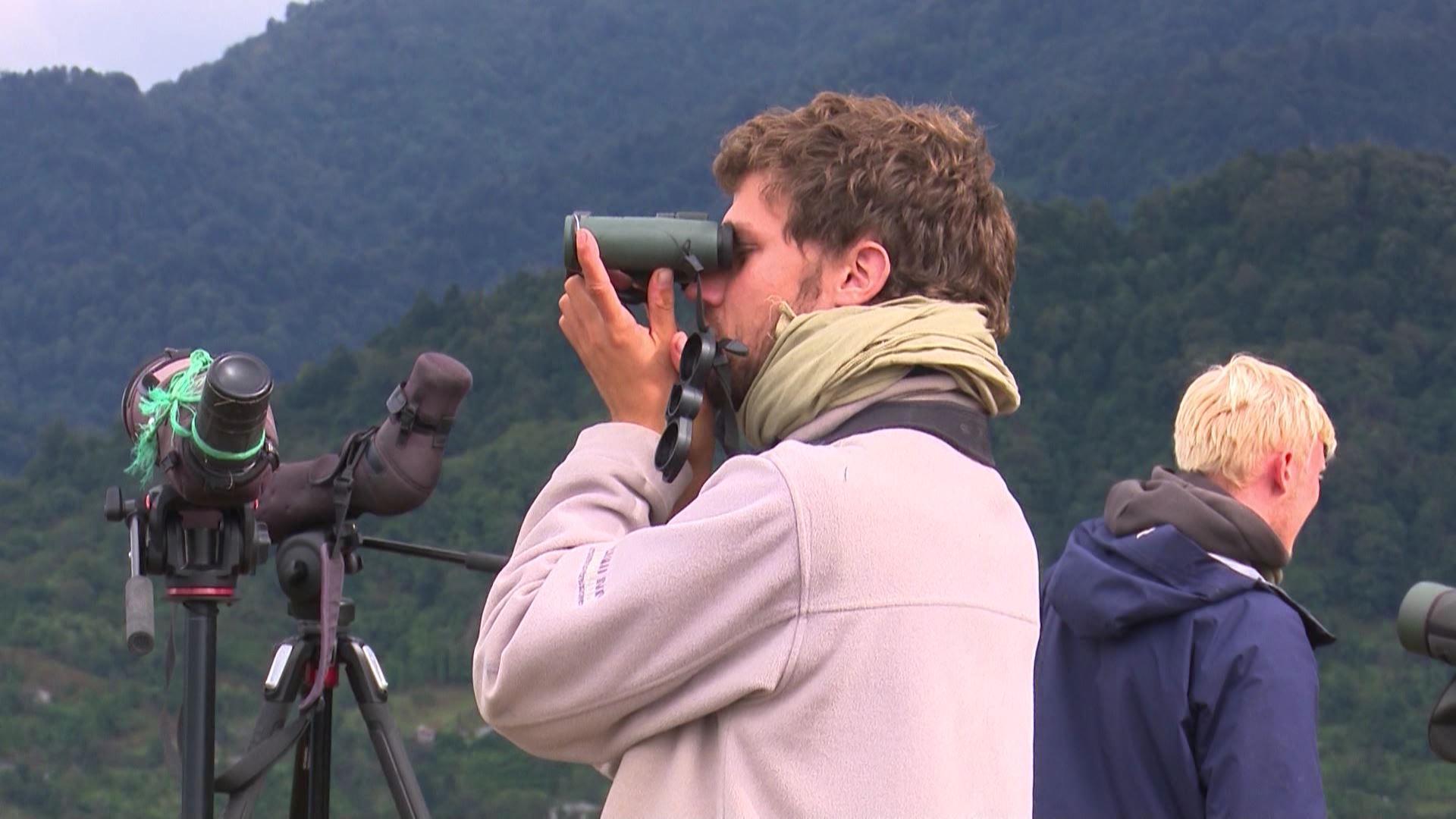 International Festival of Birds Observation