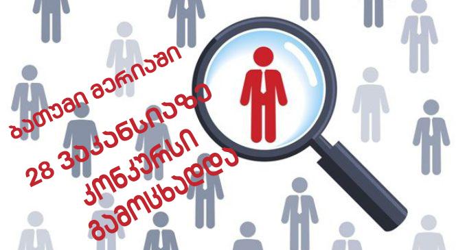 28 vacancies in Batumi City Hall
