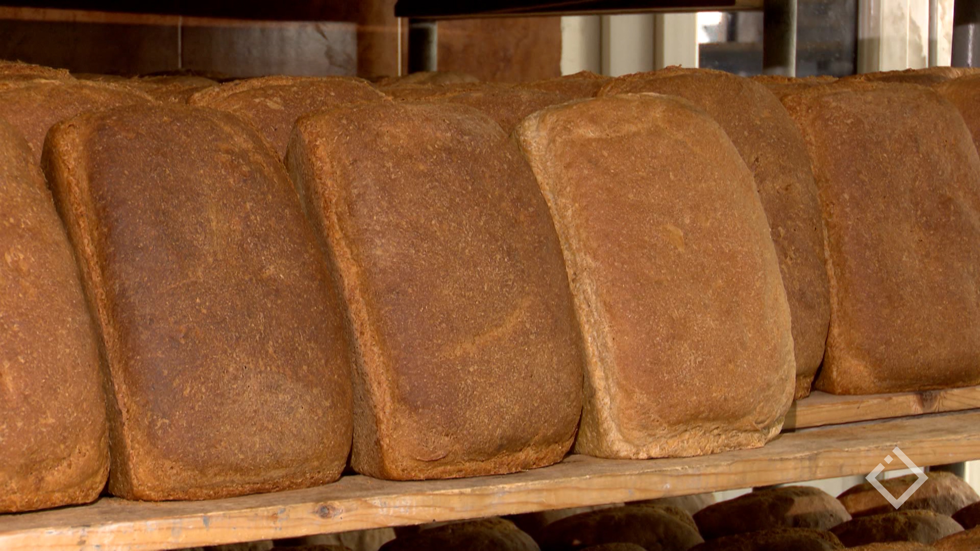 შესაძლოა მალე საქართველოში პური გაძვირდეს