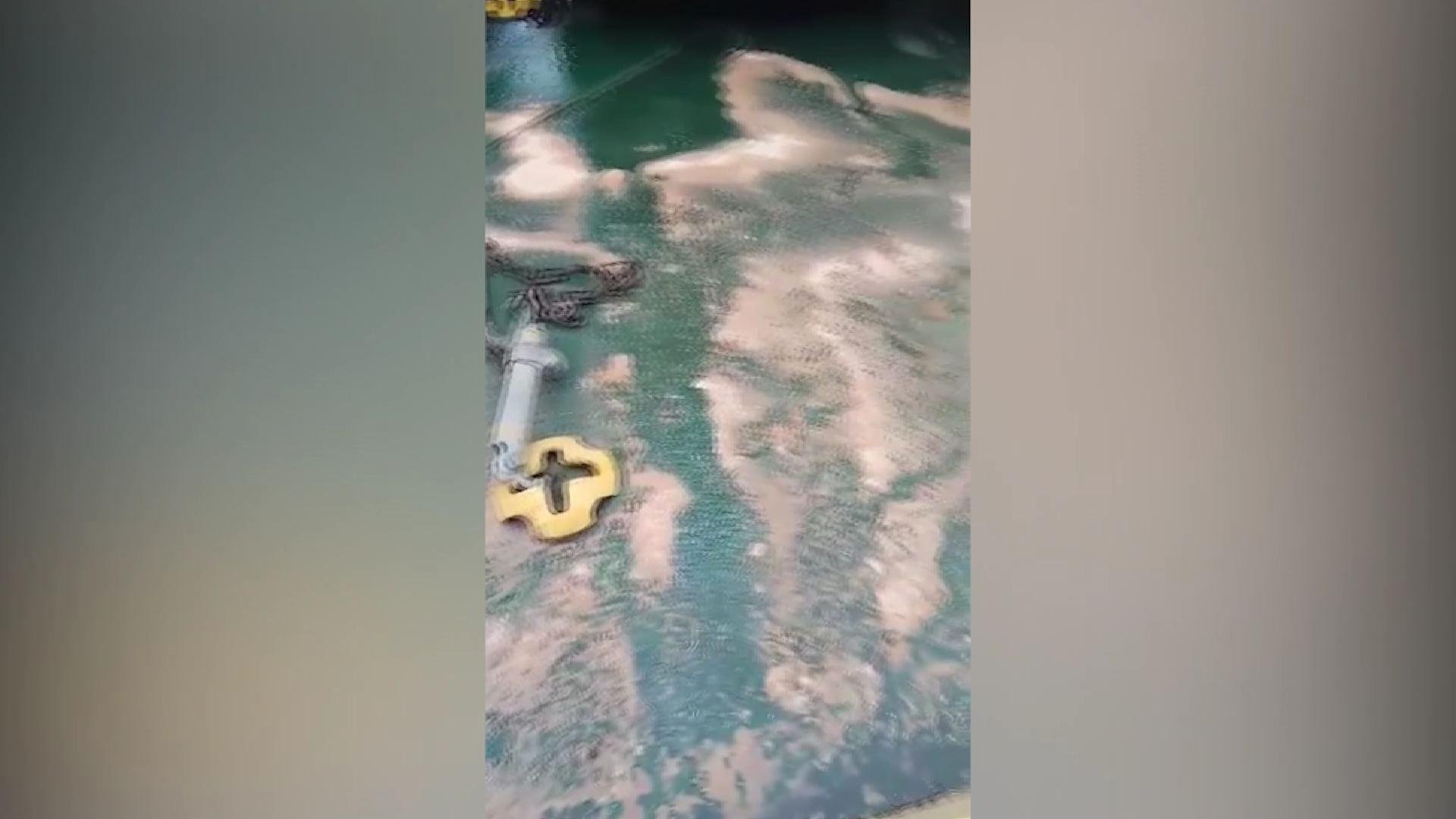 ნავთობით  ზღვის დაბინძურების   ჩაღვრის ფაქტი