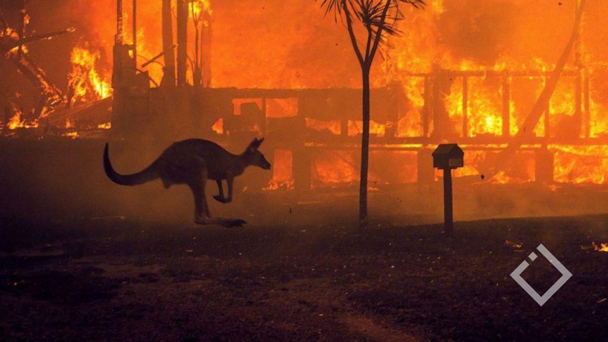 ავსტრალიის ხელისუფლება250 000 ადამიანს სტიქიის ზონის დატოვებისკენ მოუწოდებს