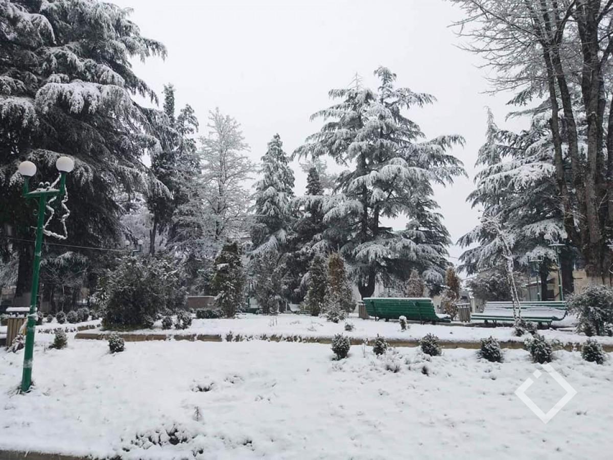 მაღალმთიან აჭარაში თოვს